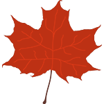Graphic of a Red Maple Leaf in Fall