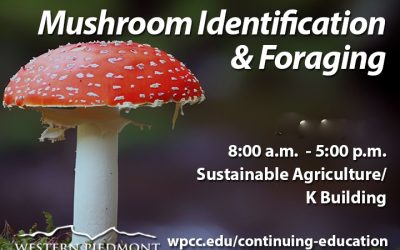 Mushroom NC Foraging License Workshop