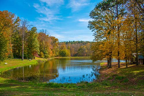 Photo of the WPCC Pond in fall with trees showing their colors